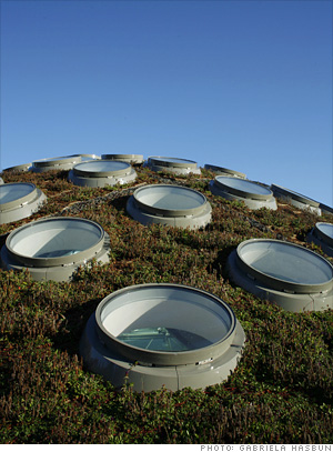 Smarter building - Living roof